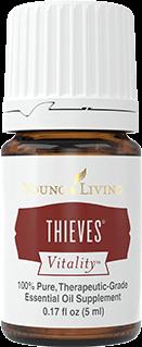 _0006_thieves
